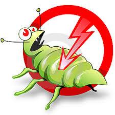Pest Control & Flea Treatments