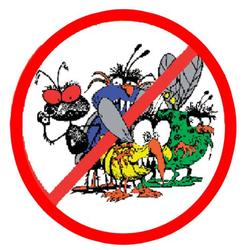 Professional Pest Control Or Flea Treatment service